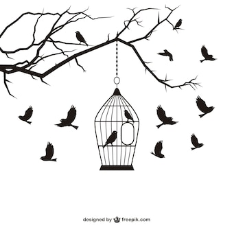 Ptaki i klatki wektora