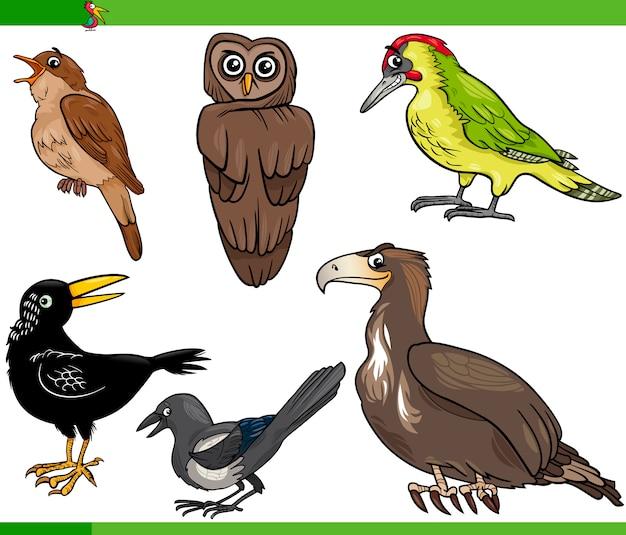 Ptaki kreskówka zestaw ilustracji