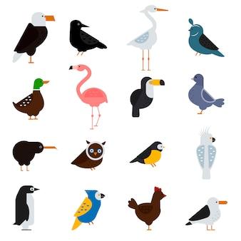 Ptaki wektor zestaw ilustracji. orzeł, papuga. gołąb i tukan. pingwiny, flamingi. wrony, pawie. cietrzew, kurczak. sofa, czapla