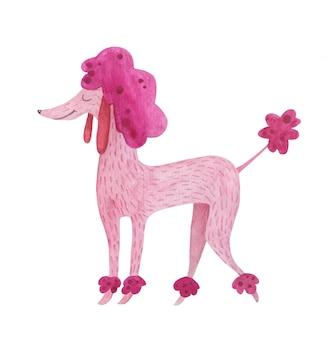 Pudel pies ręcznie rysowane w akwareli.