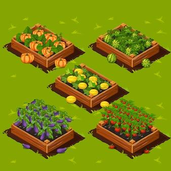 Pudełko na ogród warzywny