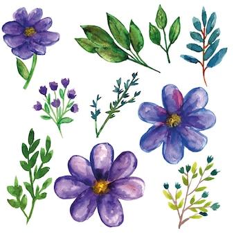 Purpurowe dzikie rośliny z kwiatem i liśćmi akwarela