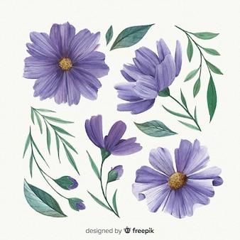 Purpurowe kwiaty i liście akwarela