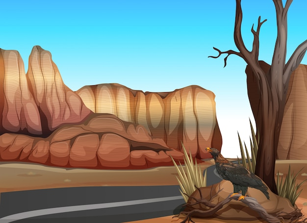 Pusta droga w zachodniej pustyni