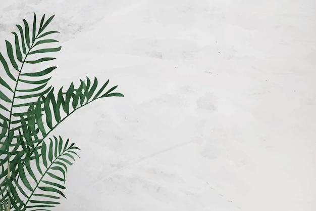 Pusta konstrukcja ramy palmowej w salonie