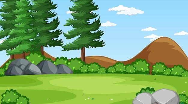 Pusta łąka w scenie dziennej z różnymi drzewami leśnymi