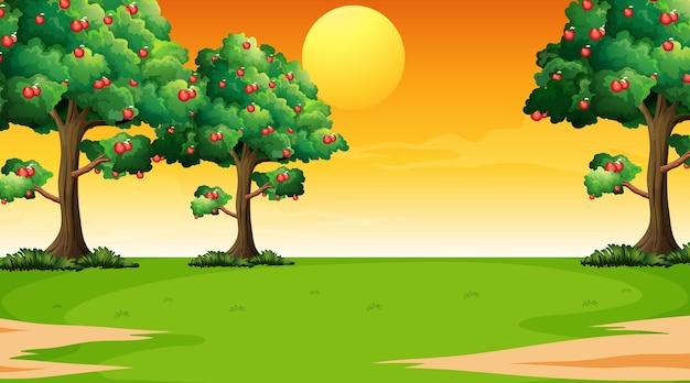 Pusta scena krajobrazu parku w czasie zachodu słońca
