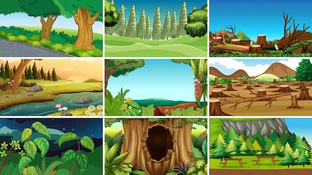 Pusta scena natury tło lub backgroundry