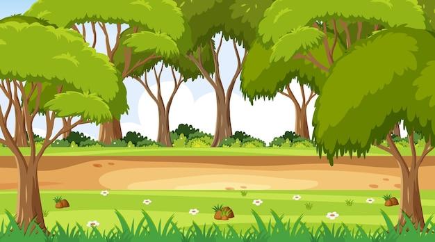 Pusta scena parku krajobrazowego z wieloma drzewami
