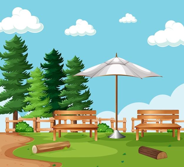 Pusta scena piknikowa w parku przyrody