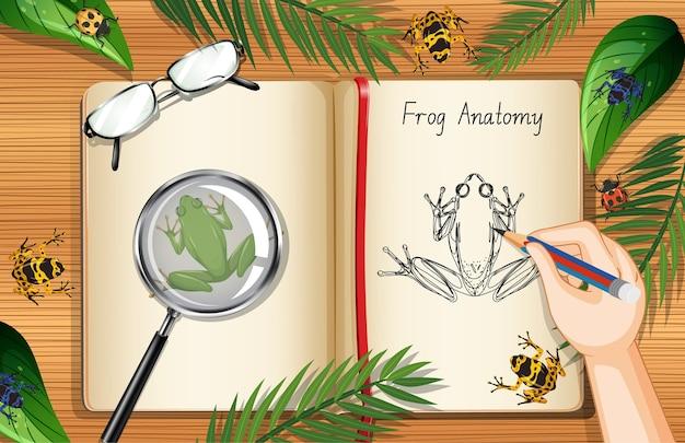 Pusta strona książki na widok z góry stołu pracy biurowej z elementem liści i żaby