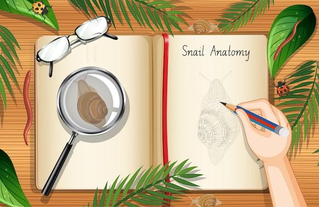 Pusta strona książki na widok z góry stołu pracy biurowej z liśćmi i elementem ślimaka