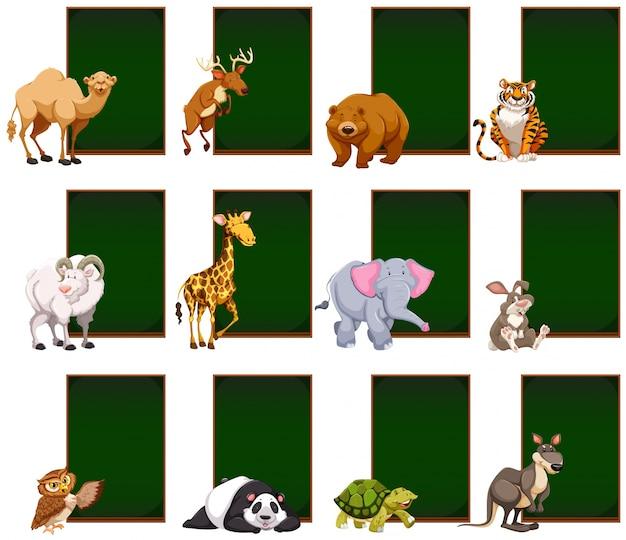Pusta tablica z dzikimi zwierzętami