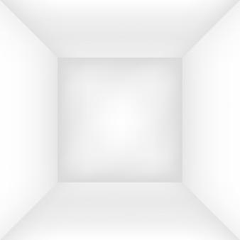 Pusty biały pokój lub pudełko. ja