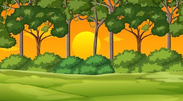 Pusty krajobraz parku przyrody na scenie zachodu słońca