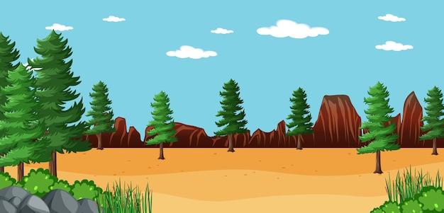 Pusty krajobraz w parku przyrody z wieloma sosnami