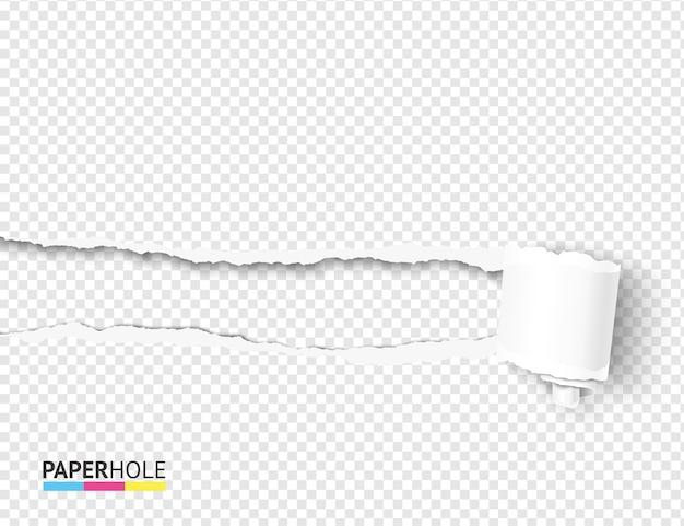 Pusty realistyczny oderwij kawałek papieru kręcone zwój