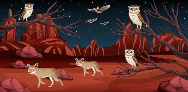 Pustynia z górami skalnymi i krajobrazem zwierząt pustynnych w nocnej scenie