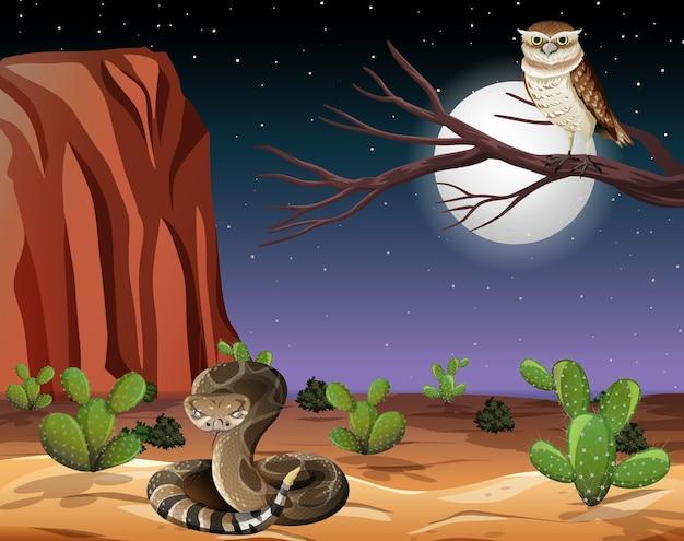 Pustynia z górami skalnymi i krajobrazem zwierząt pustynnych w scenie nocy