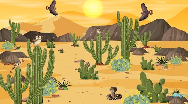 Pustynny krajobraz leśny o zachodzie słońca z pustynnymi zwierzętami i roślinami