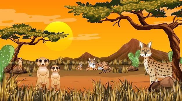 Pustynny las krajobraz o zachodzie słońca scena z dzikimi zwierzętami