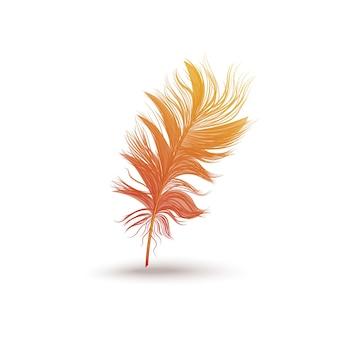 Puszyste piórko ze skrzydła fantastycznego ptaka