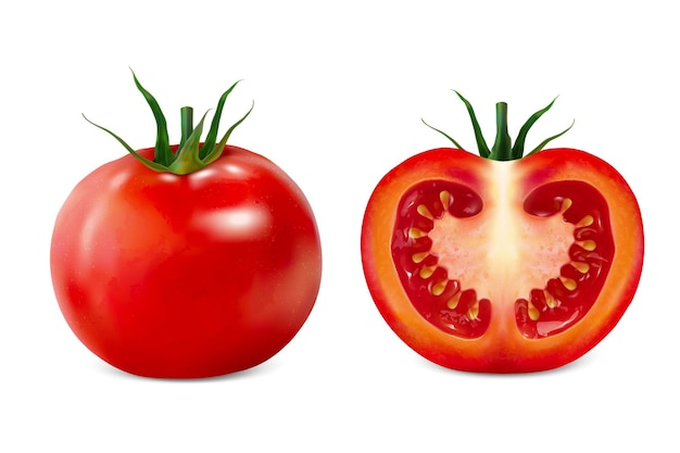Pyszna ilustracja pomidora