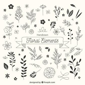 Ręcznie rysowane elementy kwiatowy w szkicowy styl