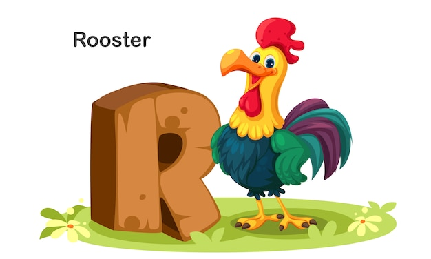 R dla rooster