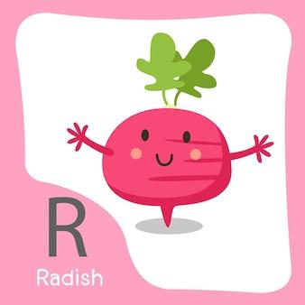 R rzodkiewka owoce słodkie