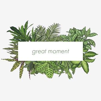 Rama egzotycznych liści tropikalnych
