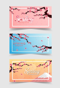 Rama kwiat wiśni. różowy transparent sakura i zachód słońca zestaw
