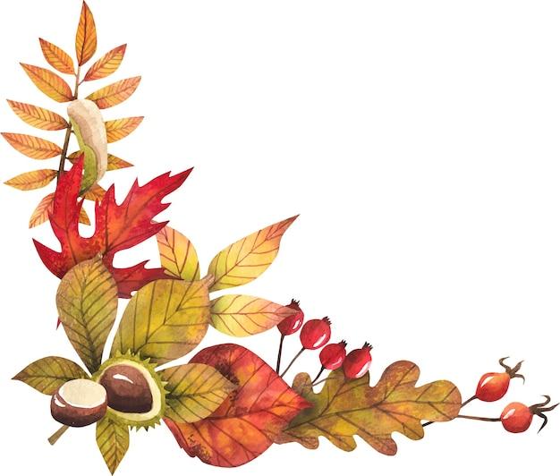 Rama liści jesienią malowane akwarelą, na białym tle, projekt jesieni