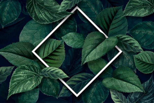 Rama liścia lasu