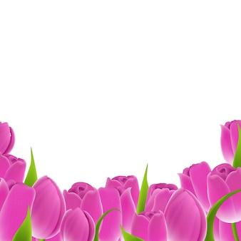 Rama różowe tulipany