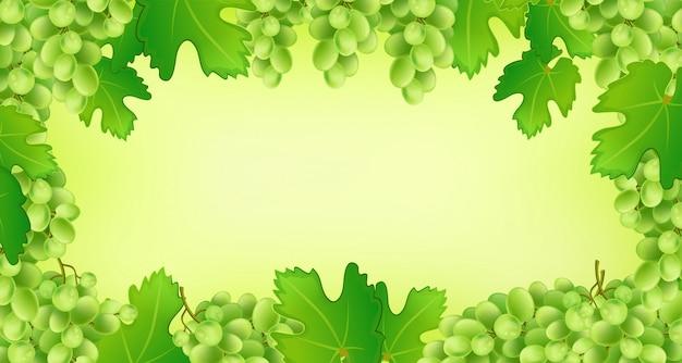 Rama tło winogron.