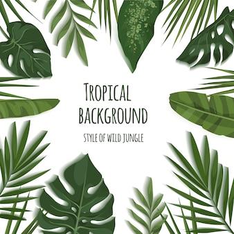 Rama tropikalnych liści.