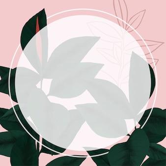 Rama wektor guma roślina tropikalny liść ilustracja botaniczna