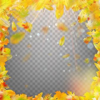 Rama z jesiennych liści spadających z góry na przezroczystym tle.