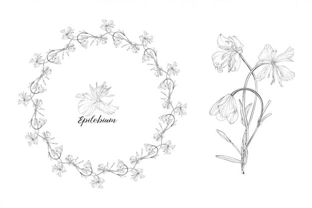 Rama z kwiatowymi elementami i kwiatem epilobium