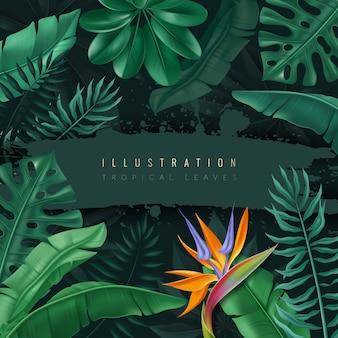 Rama z realistycznymi tropikalnymi liśćmi.