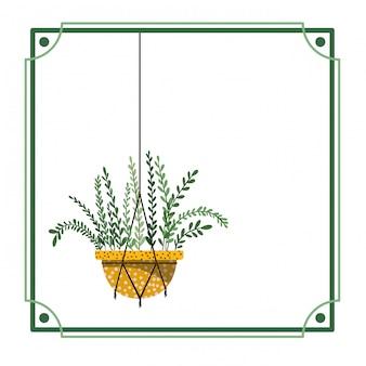 Rama z rośliną doniczkową na wieszakach makramy