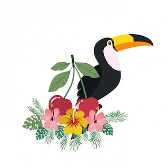 Rama z tukan i letni kwiat