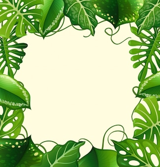 Rama z zielonymi liśćmi