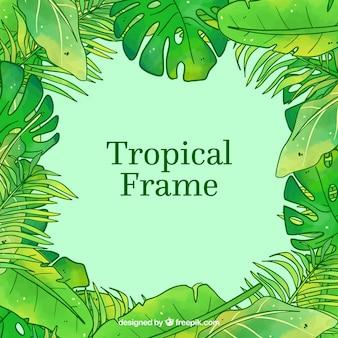 Rama zielony tropikalny urlop