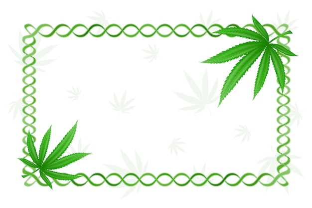 Ramka liści konopi marihuany
