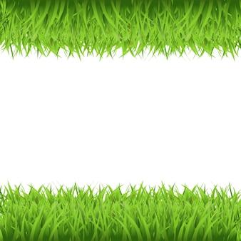 Ramka zielona trawa