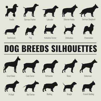 Rasy psów wektor zestaw sylwetki