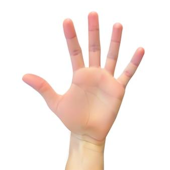 Realistyczna 3d sylwetka otwarta ręka na bielu