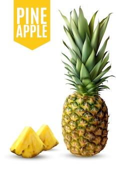Realistyczna ananasowa ilustracja